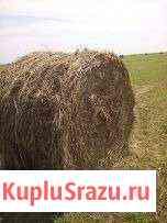 Продаю сено 2019г в рулонах Улан-Удэ
