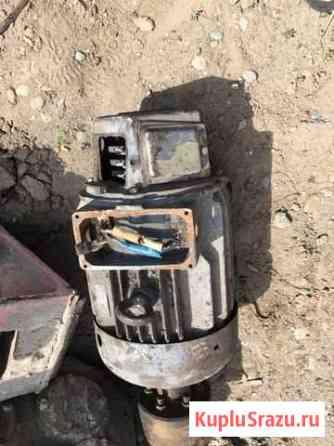 Электродвигатель Бийск