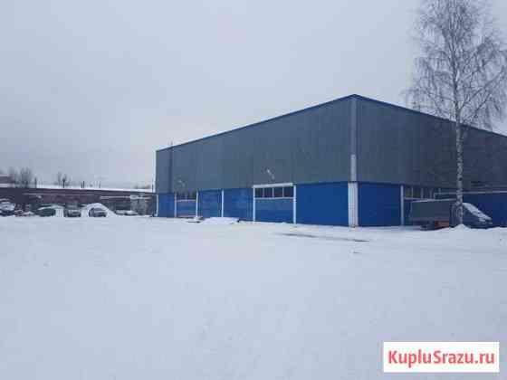Готовый арендный бизнес Кузьмоловский