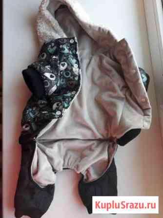 Курточка на собачку:3 Карымское