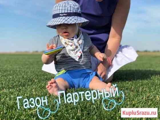 Рулонный газон от производителя Михнево