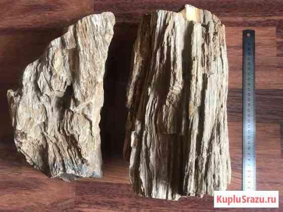Камни Окаменелое Дерево для аквариума Знамя Октября