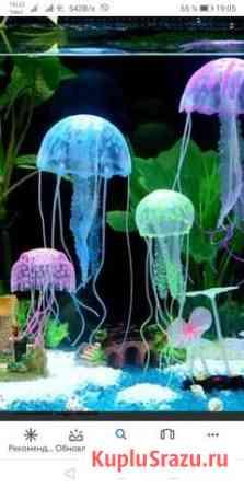Медуза в аквариум Челябинск