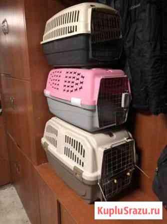 Переноска для собак и кошек и ещё кого нибудь Елизово