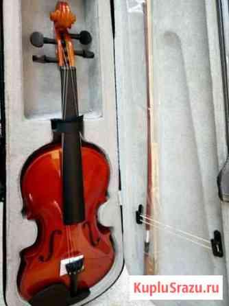 Скрипка Подольск