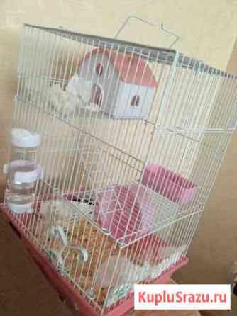 Клетка для грызунов Магадан