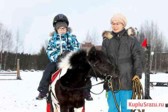 Занятия на лошадях Киров