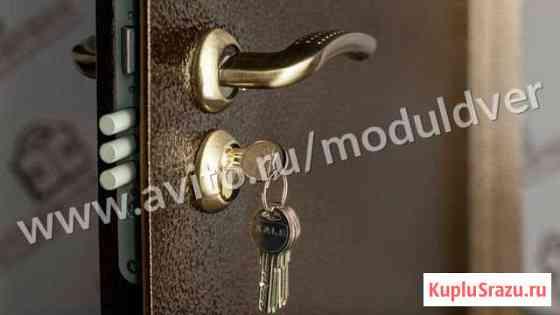 Дверь с порошковым покрытием и сталью 2 мм Ногинск
