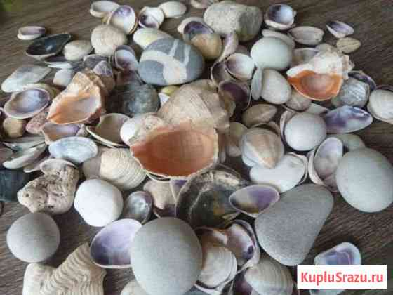 Камни и ракушки для аквариума Омск
