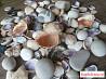 Камни и ракушки для аквариума