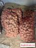 Картофель Гала картошка крупная в сетках