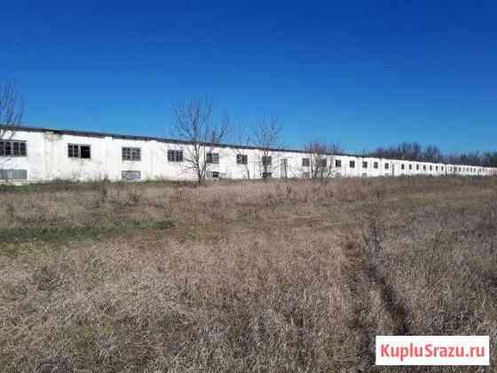 Земельный участок с фермо-птичником Каневская