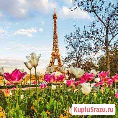 Французский язык для детей и взрослых Новороссийск
