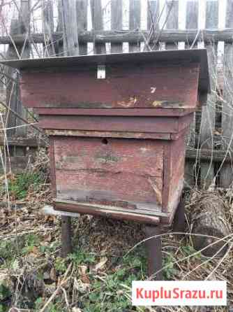 Ульи для пчёл из хорошей древесины Луховицы