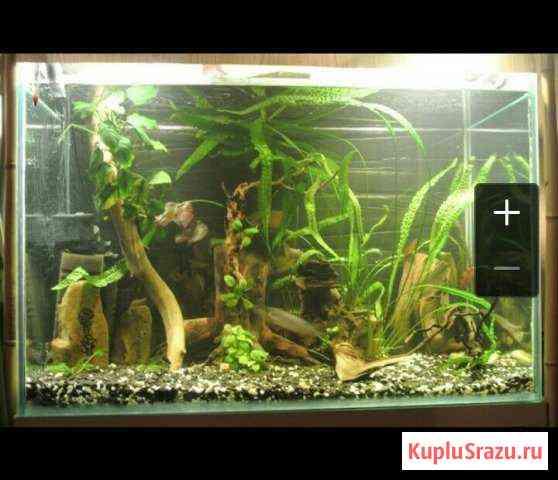 Аквариум 300 литров Челябинск
