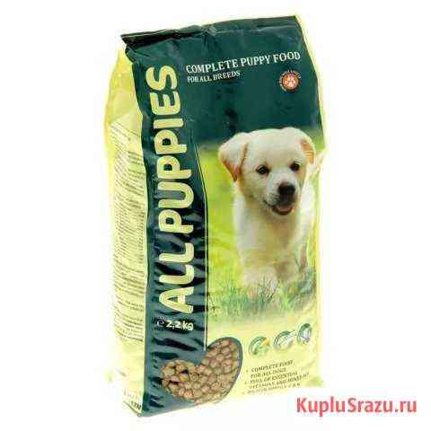 Сухой корм для собак ALL puppies Immuno.А 237 Темрюк