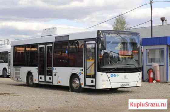 Автобус городской lotos 206 (кпг) метан Набережные Челны