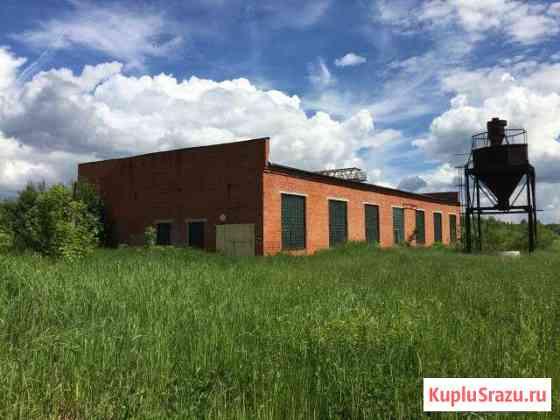 Имущественный комплекс, 3922.6 кв.м. Электрогорск