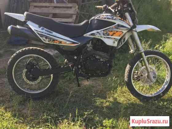 Racer panther Фряново
