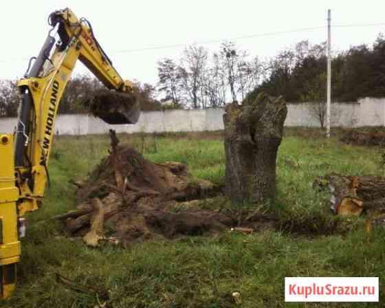 Расчистка участка, демонтаж спил деревьев Белоомут Белоомут