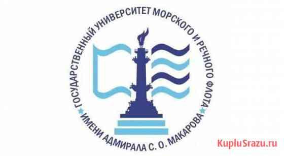 Заместитель декана фсэ по воспитательной работе Санкт-Петербург