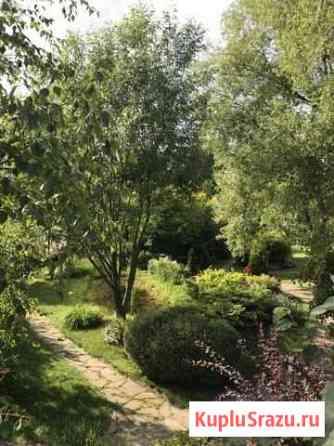 Садовник-озеленитель Химки