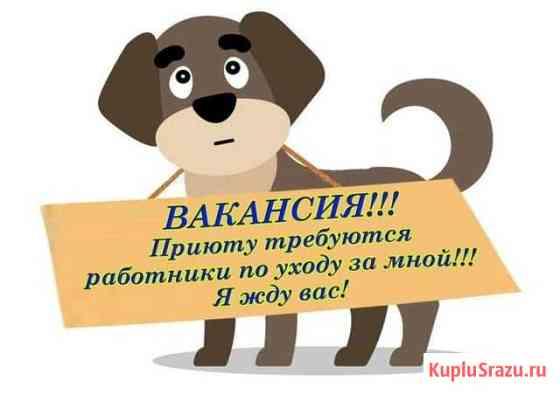 Рабочий по уходу за животными Челябинск