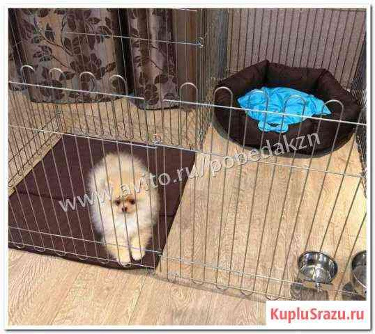 Вольер для собак квартирный в Набережных Челлнах Набережные Челны