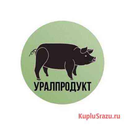 Сторож с проживанием Челябинск