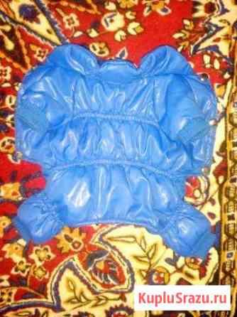 Куртка для собаки Волгоград