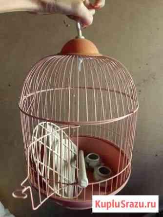 Клетка для птиц Волгоград