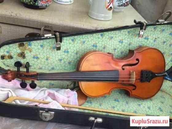 Скрипка 2/4 Калининград