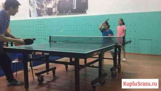 Настольный теннис Элиста