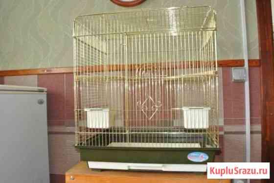 Клетка для попугаев Кострома