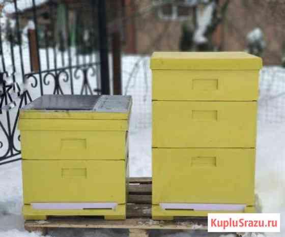 Ульи для пчел сделаны из ппу 12 рамок цельнолитые Кострома