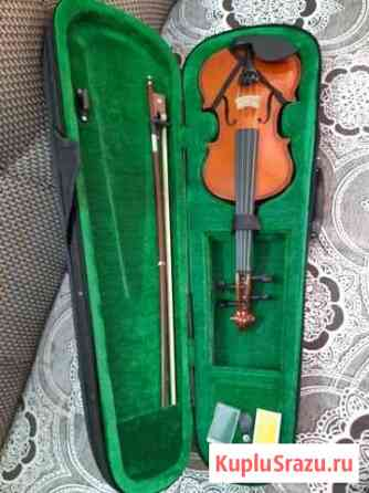 Скрипка Красноярск