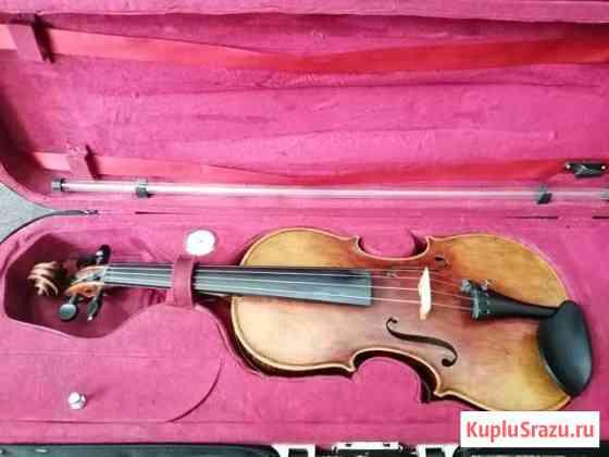 Скрипка Курск
