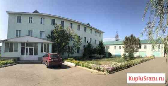 Свободного назначения 1339 кв.м. Оренбург
