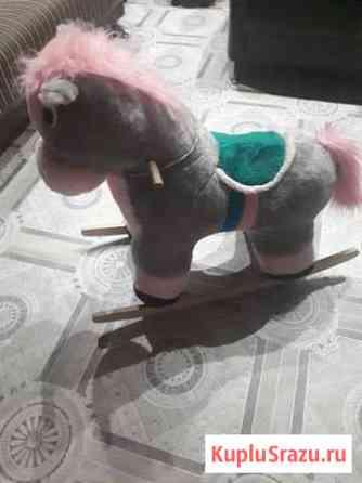 Качалка лошадь Нерюнгри