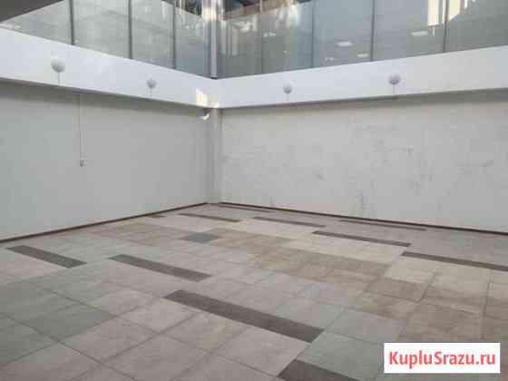 Торгово-офисное помещение с прозрачным потолком Хабаровск