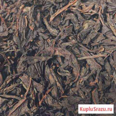 Иван чай Абакан
