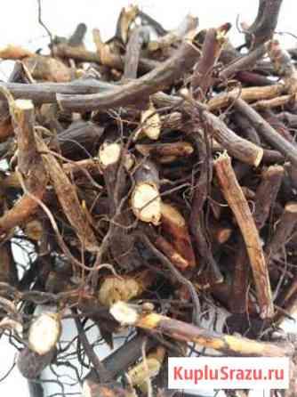 Шиповник(корень) 50 гр Вешкайма