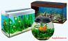 Чистка аквариумов на дому и офисе