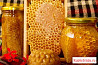 Мёд со своей пасеки