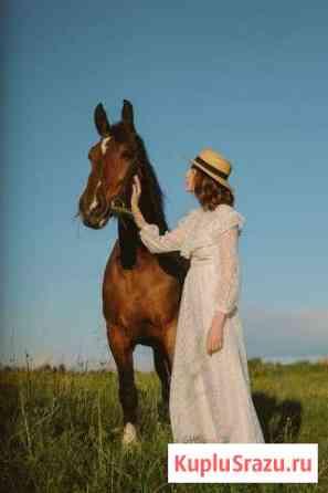 Лошадь Суздаль