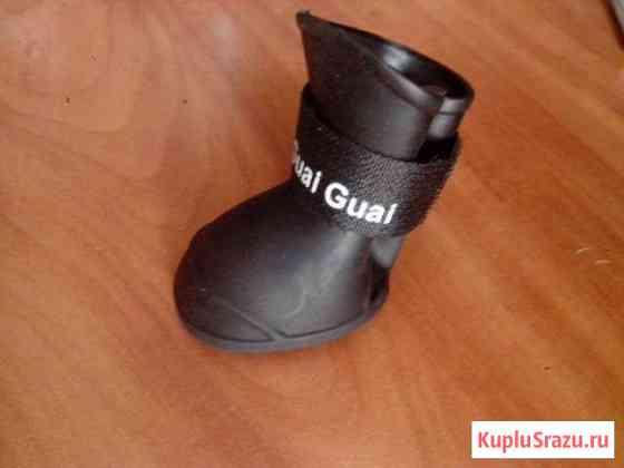 Обувь для собак Смоленск