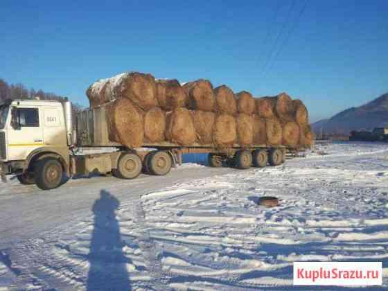 Продам сено,Шебалино. Доставка по Республике Алтай Онгудай