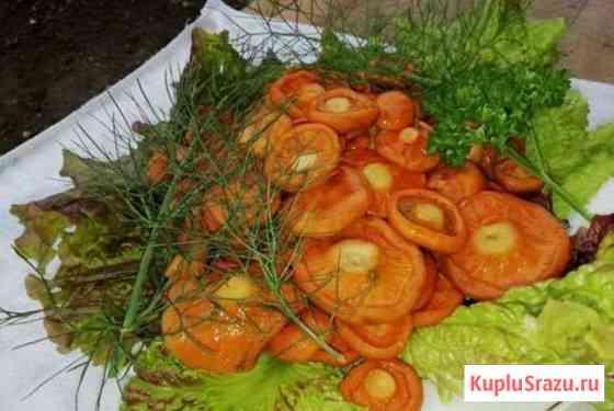 Рыжики грибы, соленые Йошкар-Ола