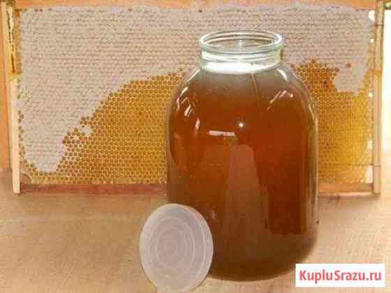 Продам мёд Лесное разнотравье Курск