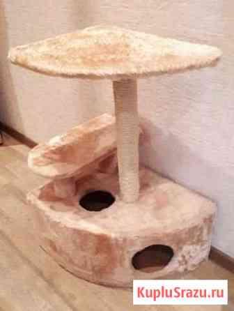 Когтеточка домик для кошки Красноярск
